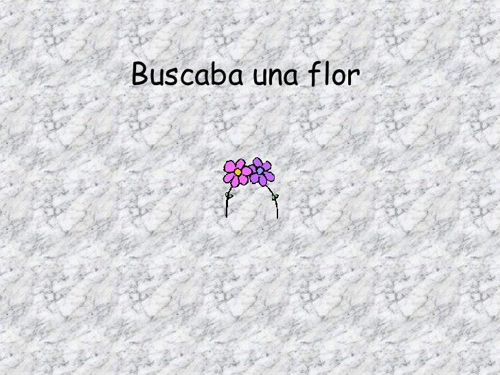 Buscaba una flor