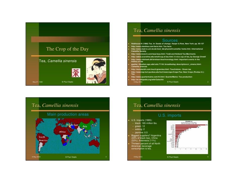 Tea, Camellia sinensis                                                                                    Sources         ...