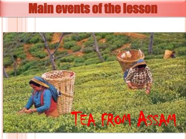 Tea from assam