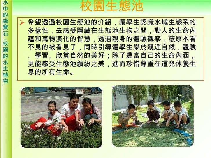 校園的水生植物介紹 Slide 2