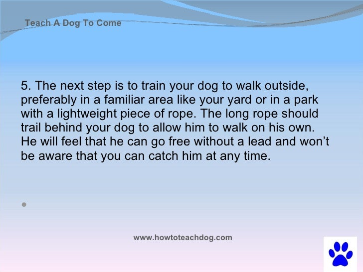 how to train a dog come when called
