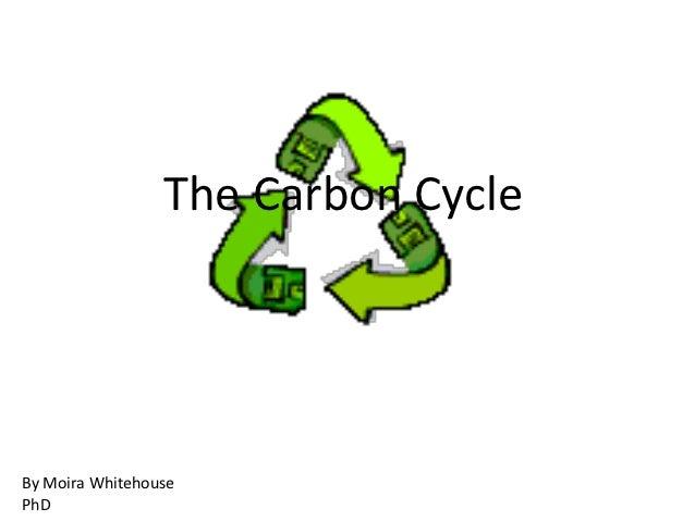 The Carbon CycleBy Moira WhitehousePhD