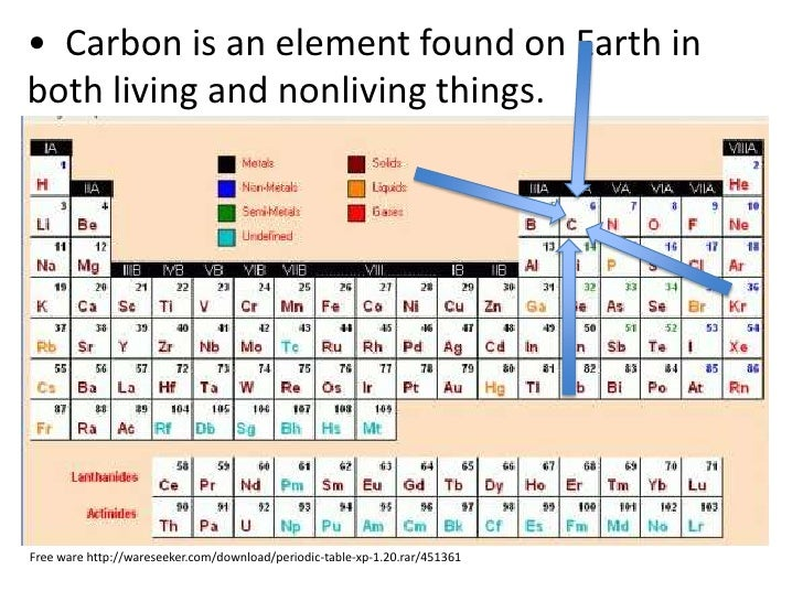 Carbon And Nitrogen Cycles Teach