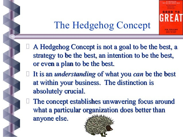 Hedgehog concept business plan