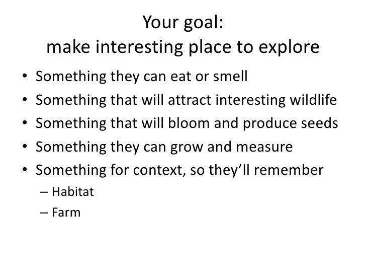Your goal: make interesting place to explore<br />Something they can eat or smell<br />Something that will attract interes...