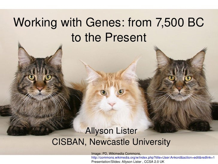 Working with Genes: from 7,500 BC to the Present Allyson Lister CISBAN, Newcastle University Image: PD, Wikimedia Commons,...