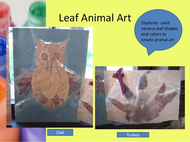 Scratch ArtStudents usedscratch art toreveal colorpictures!