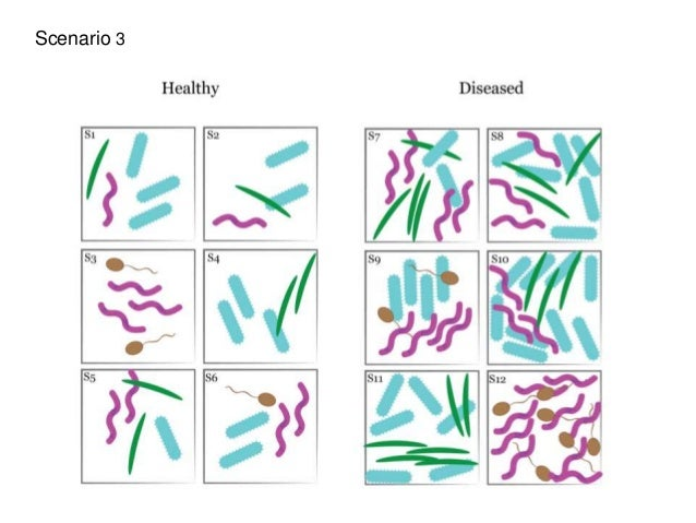 obesity alters gut microbial ecology essay