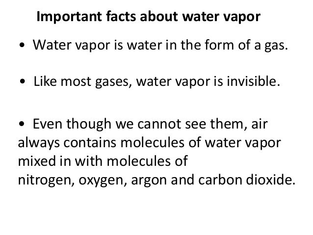 8 Important Facts About Water