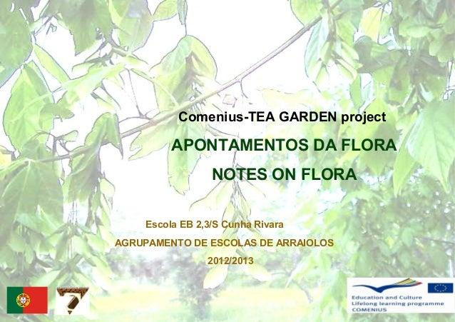 Comenius-TEA GARDEN projectAPONTAMENTOS DA FLORANOTES ON FLORAAGRUPAMENTO DE ESCOLAS DE ARRAIOLOS2012/2013Escola EB 2,3/S ...
