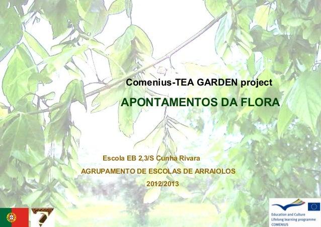Comenius-TEA GARDEN projectAPONTAMENTOS DA FLORAAGRUPAMENTO DE ESCOLAS DE ARRAIOLOS2012/2013Escola EB 2,3/S Cunha Rivara