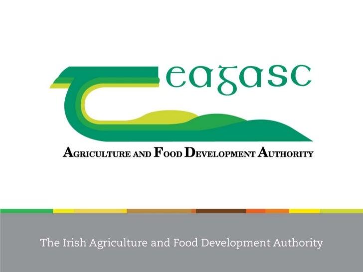 Teagasc Food Industry DevelopmentSupports                       Pat Daly     Head, Food Industry Development Department