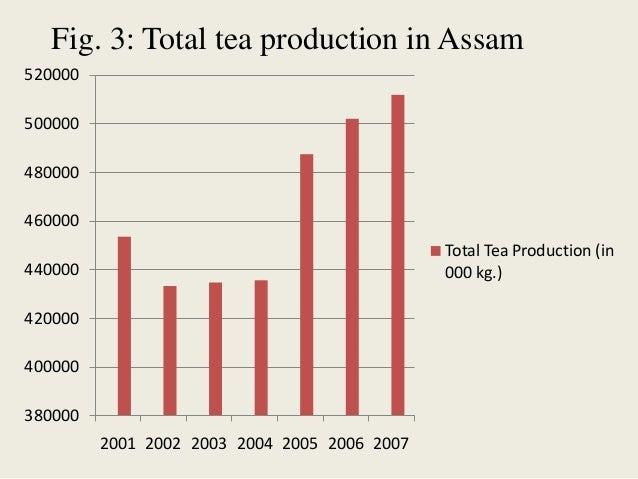 Tea industry in assam