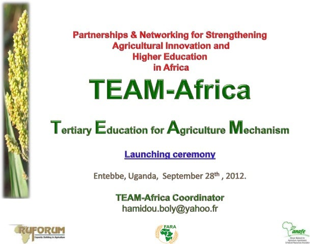 I. TAE Context and ChallengesII. TEAM-Africa Vision – Mission – ObjectivesIII. Activities towards transforming TAE in Afri...
