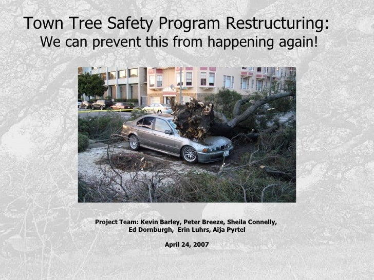 Town Tree Safety Program Restructuring:  We can   prevent this from happening again! Project Team:  Kevin Barley, Peter Br...