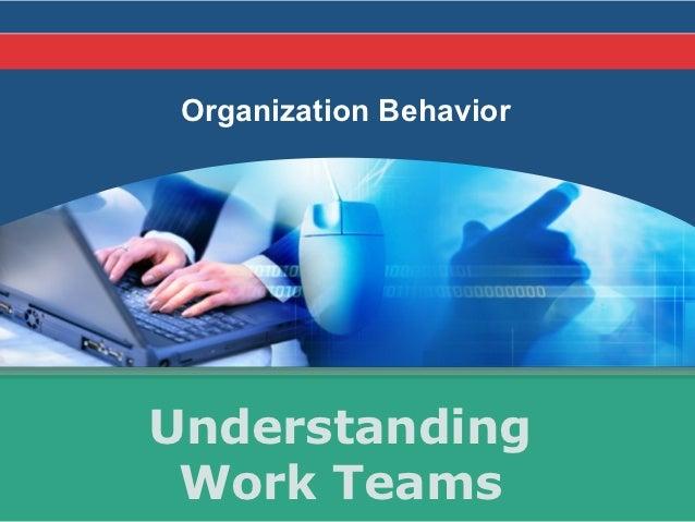 Organization BehaviorUnderstanding Work Teams