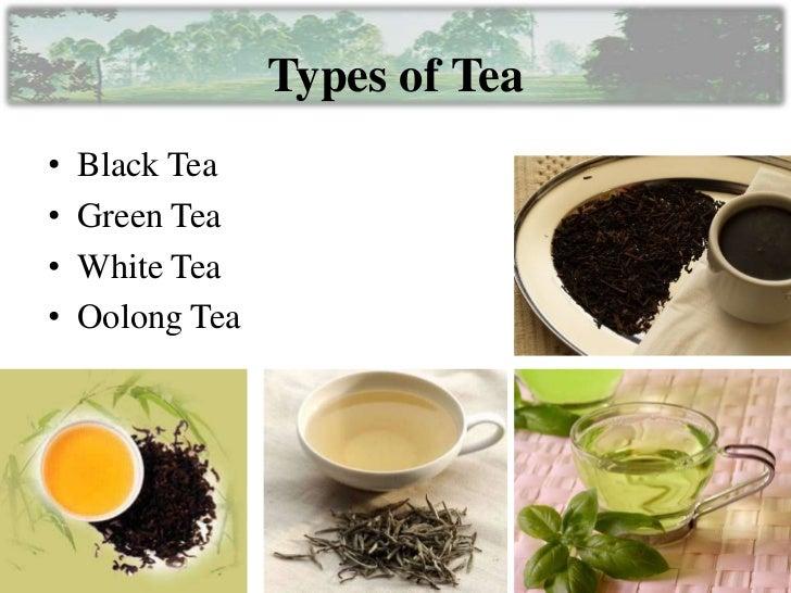 Tea manufacturing process part 1