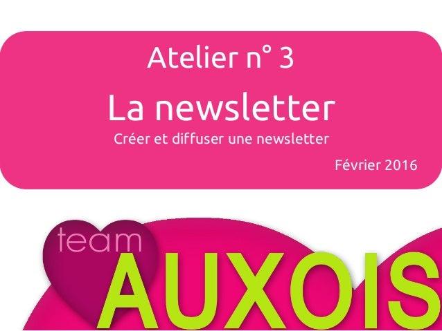 Atelier n°4 Les avis clients Février 2015 Atelier n° 3 La newsletter Créer et diffuser une newsletter Février 2016