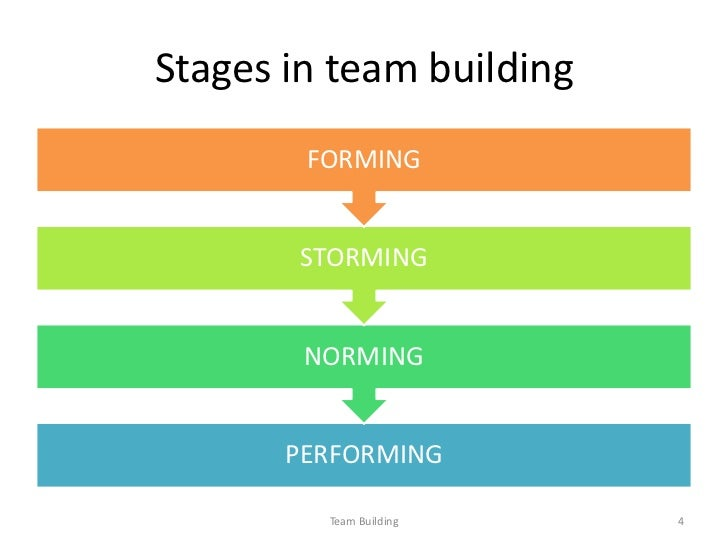 the team process