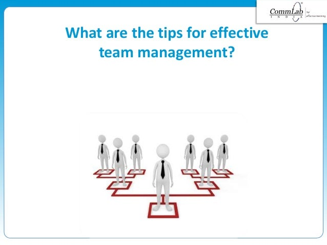 What are the tips for effective team management?