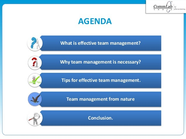 AGENDA Conclusion. What is effective team management? Why team management is necessary? Tips for effective team management...