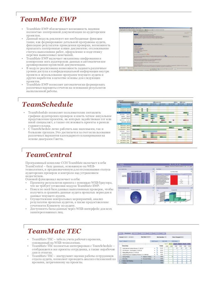 teammate internal audit software overview for russian
