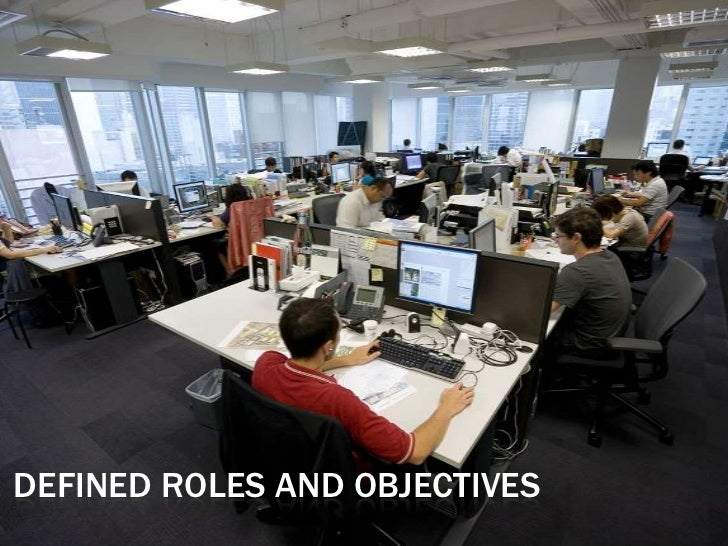 Defined Roles and Objectives<br />