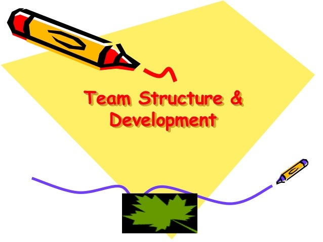 Team Structure & Development