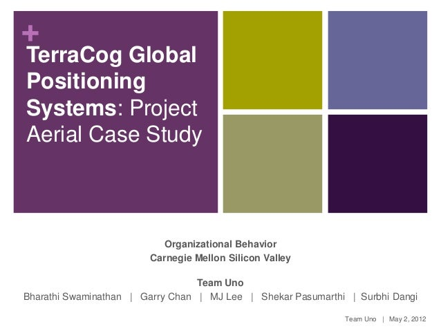 +TerraCog GlobalPositioningSystems: ProjectAerial Case Study                          Organizational Behavior             ...