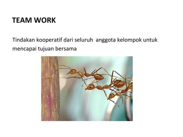 TEAM WORK Tindakan kooperatif dari seluruh anggota kelompok untuk mencapai tujuan bersama