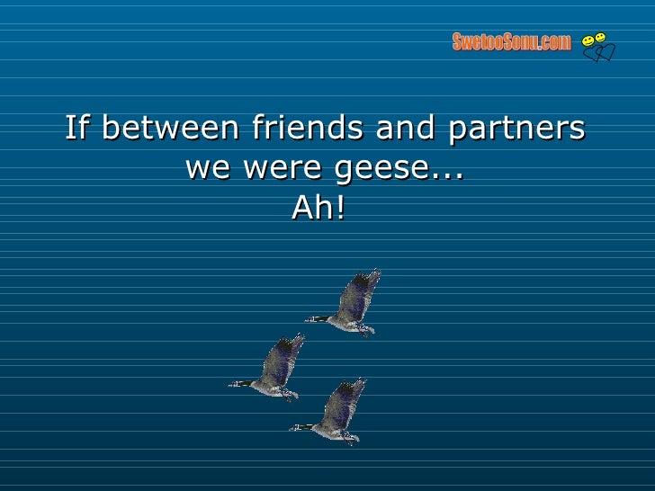 If between friends and partners we were geese... Ah!  SwetooSonu.com