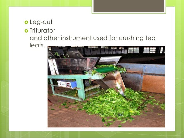  During the manufacture of tea, both spontaneous and controlled oxidation occurs  Oxidation in tea manufacture officiall...