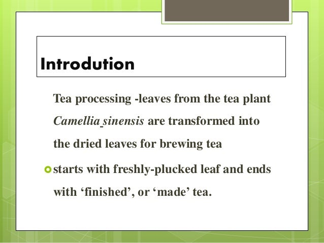 Introdution Tea processing -leaves from the tea plant Camellia sinensis are transformed into the dried leaves for brewing ...