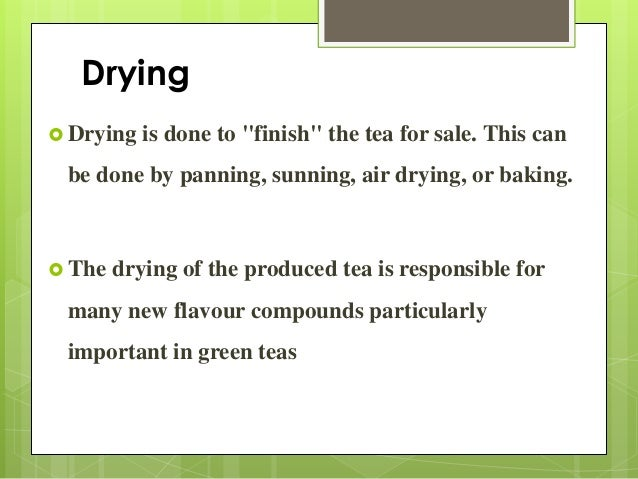 Main Component of Tea 1) Tannin 2) Phenolic compound 3) Amino acids 4) Caffeine 5) Carotenoids 6) Carbohydrates