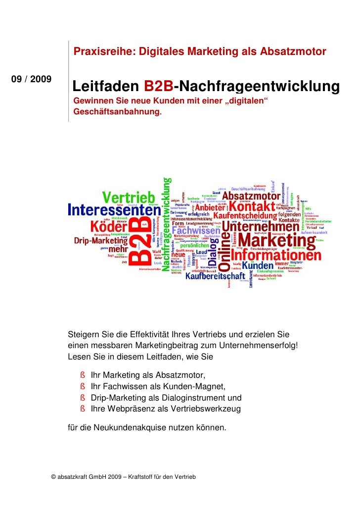 Praxisreihe: Digitales Marketing als Absatzmotor  09 / 2009                Leitfaden B2B-Nachfrageentwicklung             ...