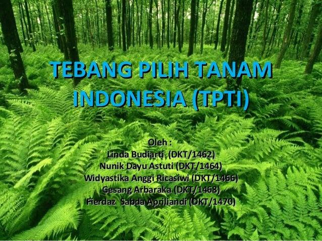 TEBANG PILIH TANAM  INDONESIA (TPTI)                Oleh :       Linda Budiarti (DKT/1462)     Nunik Dayu Astuti (DKT/1464...