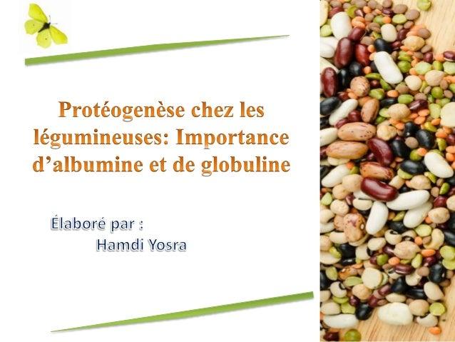 Protéogenèse chez le légumineuses: Importance d'albumine et de globul…