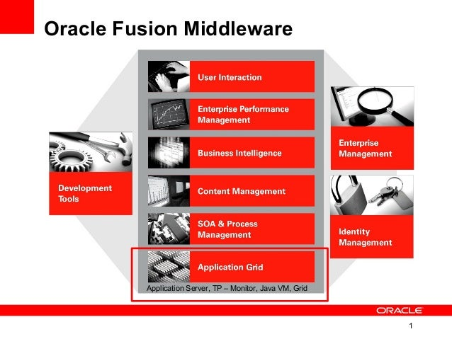 1 Oracle Fusion Middleware Application Server, TP – Monitor, Java VM, Grid