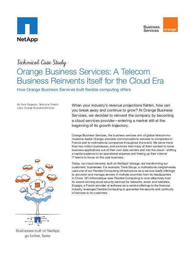 orange telecommunications case study