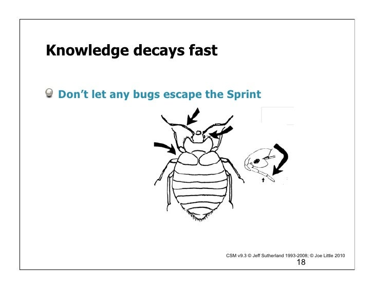 Are You Ready Ready also Scrum team mechanics burn down chart additionally 28 Things Only Developers Will Find Funny in addition 1 Vortrag Auf Der Doag Konferenz Agile Softwareentwicklung Mit Oracle Adf together with Flat Corporate Hierarchy. on scrum definition