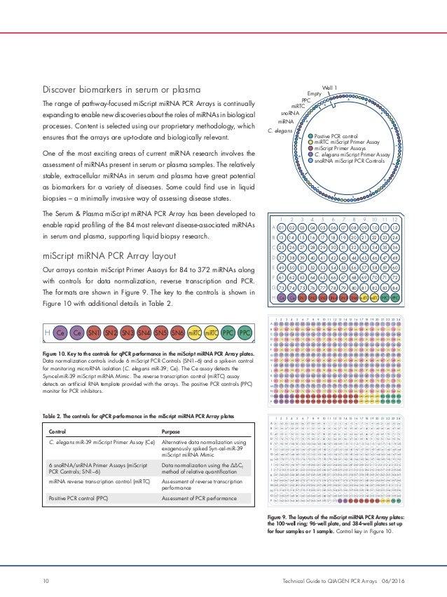 Technical Guide to Qiagen PCR Arrays - Download the Guide