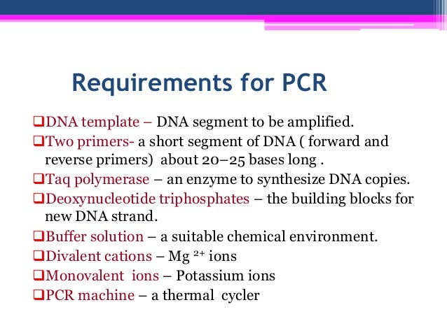 pcr template amount - technique of polymerase chain reaction pcr experimental