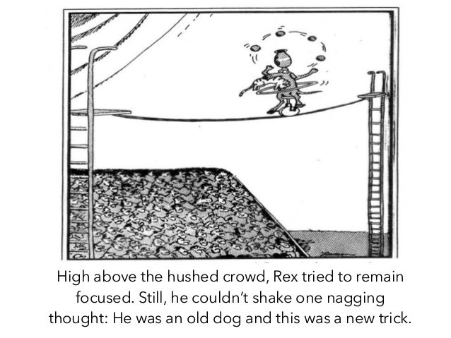 High above the hushed crowd, Rex tried to remain focused. Still, he couldn't shake one nagging thought: He was an old dog ...