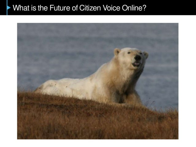What is the Future of Citizen Voice Online?