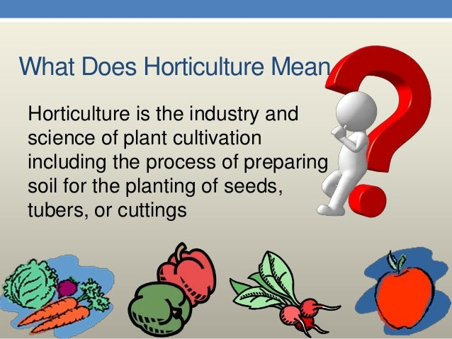 Technology Of Horticulture