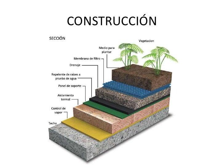 Techos verdes for Techos y paredes verdes
