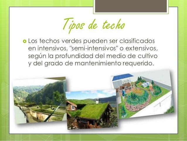Techos verdes grupo 4 entrega parcial for Tipos de techos