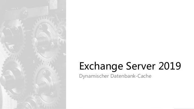 Exchange Server 2019 Dynamischer Datenbank-Cache