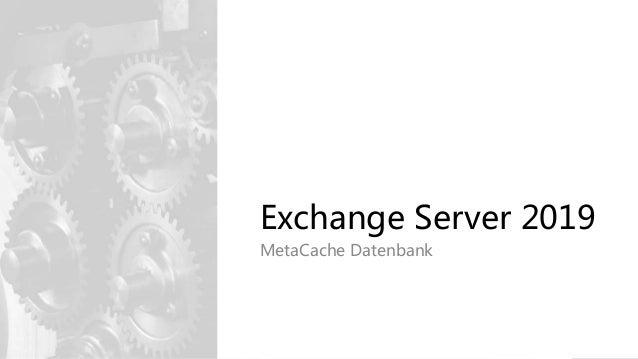 Exchange Server 2019 MetaCache Datenbank
