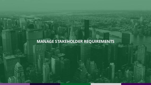 MANAGE STAKEHOLDER REQUIREMENTS